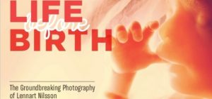 Lennart Nilsson educate people about life before birth photography